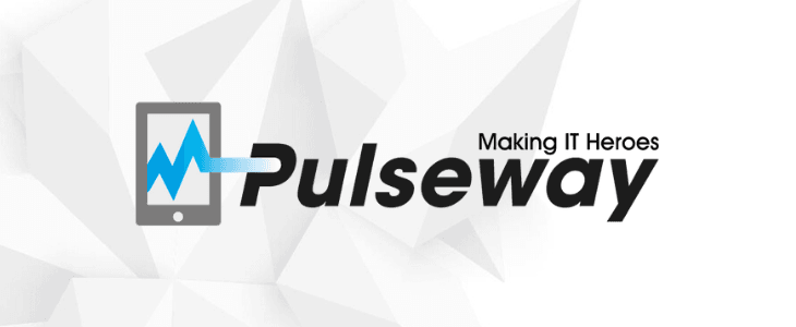 Pulseway Introduces Support for Custom Third Party Titles Patching and Reveals Year-End Results