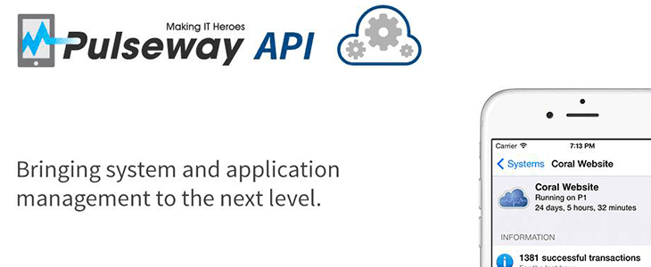 Customize your Pulseway experience with the REST API and the Cloud API
