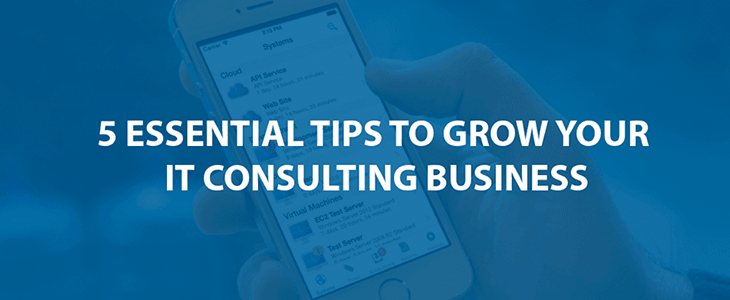 5 Essential Tips on Growing your IT Consulting Business