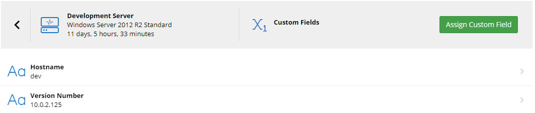 Custom Fields Editing